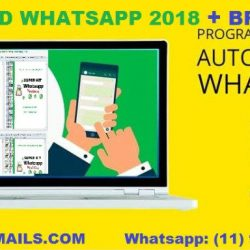 LISTA DDD WHATSAPP MARKETING + PROGRAMA DE ENVIOS WHATSAPP 2018